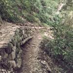 高尾登山4号路