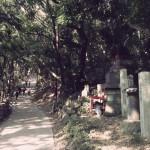 高尾登山1号路