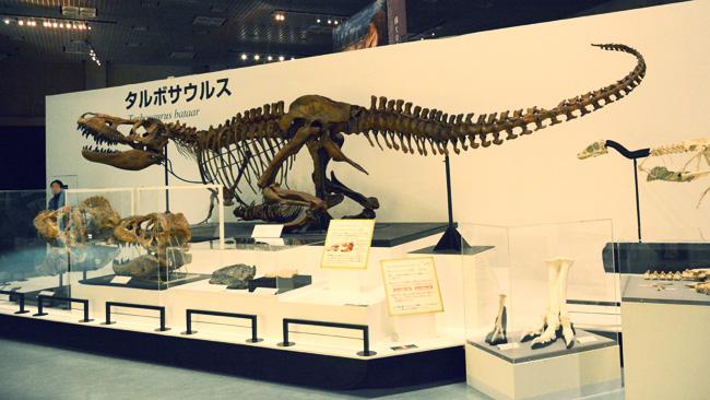 タルボサウルス