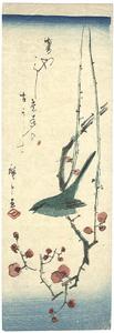 梅に鶯 / 広重初代