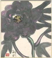 自筆色紙 花(仮題) / 寺田政明