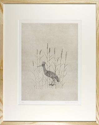 鳥 / 南桂子