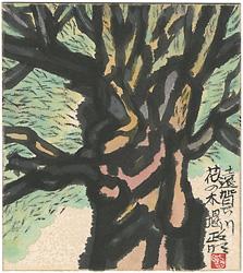 自筆色紙 遠賀川花の木堤 / 寺田政明