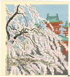 平安神宮 枝垂桜 / 徳力富吉郎