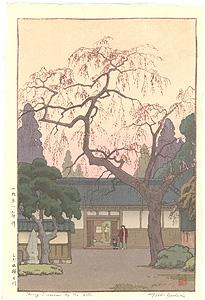 しだれ桜と門 / 吉田遠志