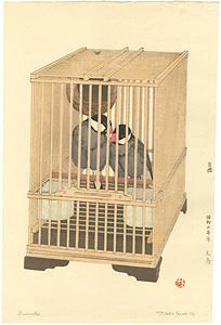 文鳥 / 吉田遠志