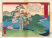 日本地誌略図 因幡国 湖山の池 / 広重三代