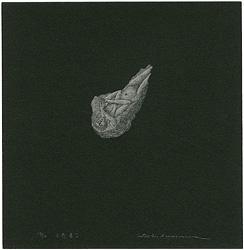 小惑星(I) / 柄澤齊
