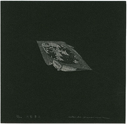 小惑星(II) / 柄澤齊