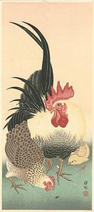 つがいの鶏 / 小原古邨(祥邨)