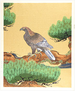松に鷹図 / 狩野探幽