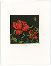 薔薇 / 織田繁