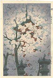 桜 上野東照宮 / 笠松紫浪