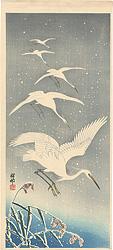 雪中の白鷺(仮題) / 小原古邨(祥邨)