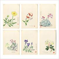 【木版画はがき】光旦木版「那須高山花」