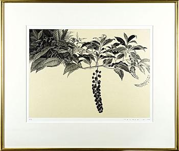 インクベリー / 武田史子