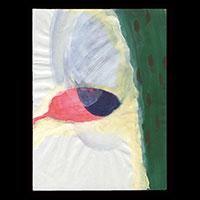 【アクリル画】山口奈穂「あかい池と雲の影」