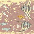 橋本興家「花と魚」