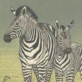 吉田遠志「Zebras」