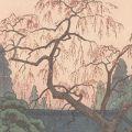 吉田遠志「しだれ桜と門」