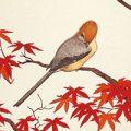 吉田遠志「紅葉の安らぎ」