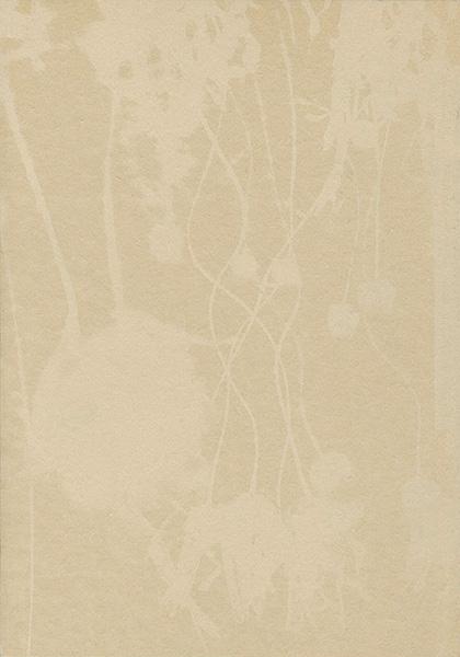 「大森澪銅版画集 ミィレフィオーリ/千々の花」石川翠/言水ヘリオ編/
