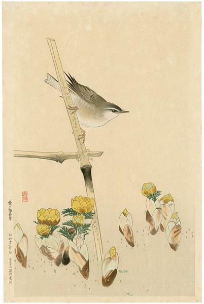 福田翠光「鶯と福寿草」/