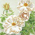 橋本興家「白牡丹」