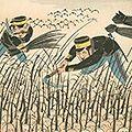 清親「日本万歳 百撰百笑 新日本の開拓 骨皮道人」