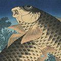 北斎「鯉【復刻版】」