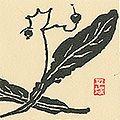 平塚運一「菩提樹の実」