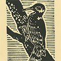 平塚運一「啄木鳥」