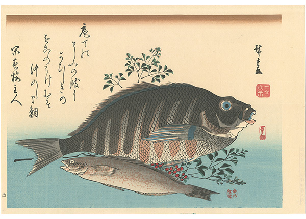 広重初代「魚づくし しまだい・あいなめに南天【復刻版】」/