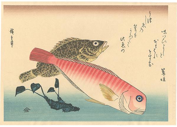 広重初代「魚づくし あまだい・藻魚にわさび【復刻版】」/