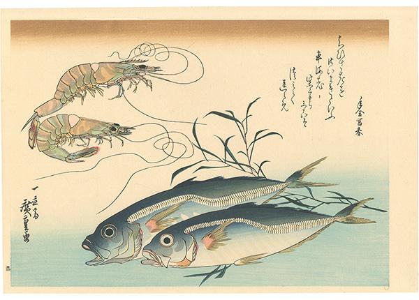 広重初代「魚づくし 車海老・鯵にたで【復刻版】」/