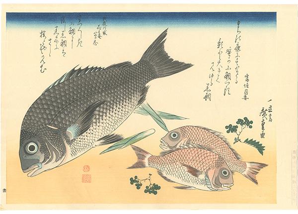 広重初代「魚づくし 黒鯛・小鯛に山椒【復刻版】」/