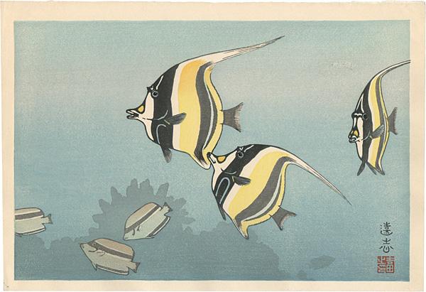 吉田遠志「ハワイの魚 B」/