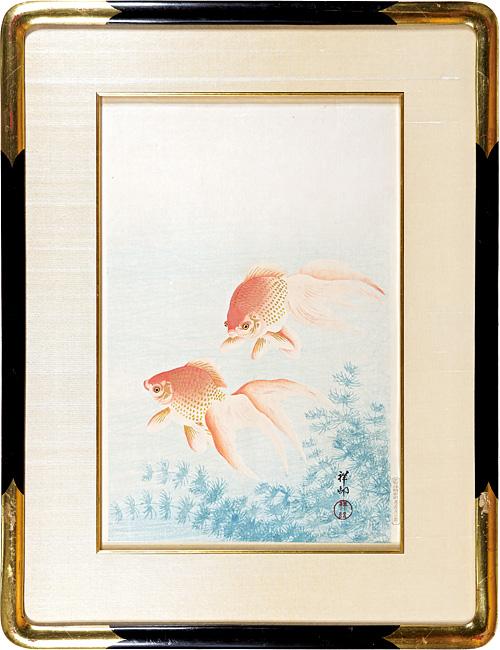 小原古邨(祥邨)「金魚」/
